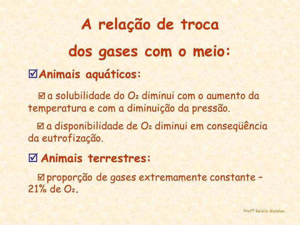 As trocas gasosas nos animais: Por difusão: Poríferos, Cnidários, Platelmintos e Nematelmintos.
