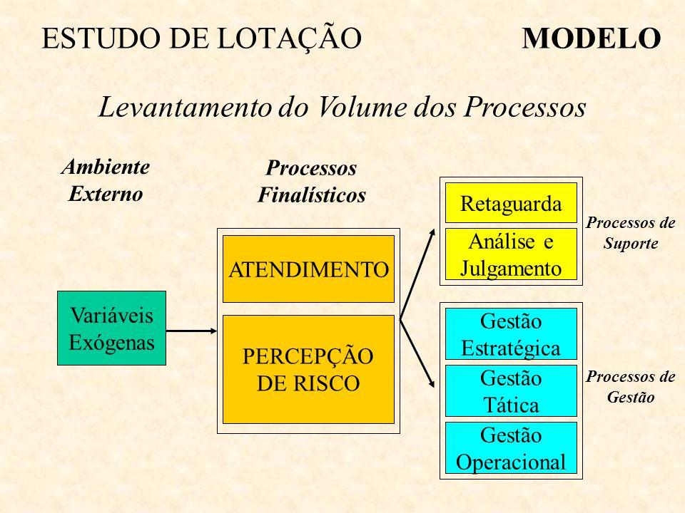 Variáveis Exógenas Ambiente Externo ATENDIMENTO PERCEPÇÃO DE RISCO Processos Finalísticos Processos de Suporte Retaguarda Análise e Julgamento Processos de Gestão Gestão Estratégica Gestão Tática Gestão Operacional MODELOESTUDO DE LOTAÇÃO Levantamento do Volume dos Processos