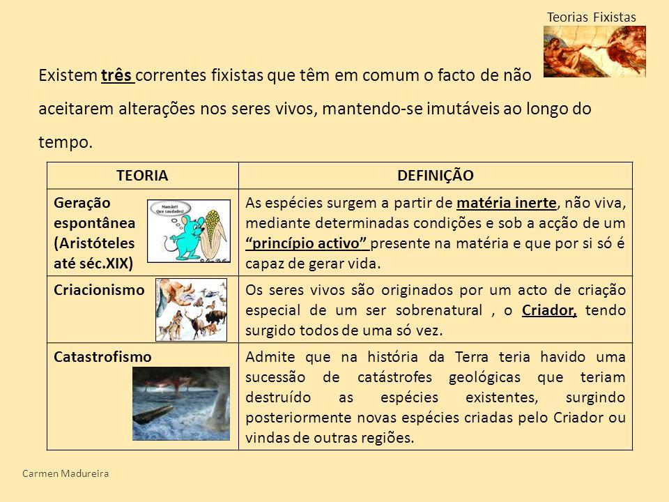 Carmen Madureira Teorias Fixistas Existem três correntes fixistas que têm em comum o facto de não aceitarem alterações nos seres vivos, mantendo-se im