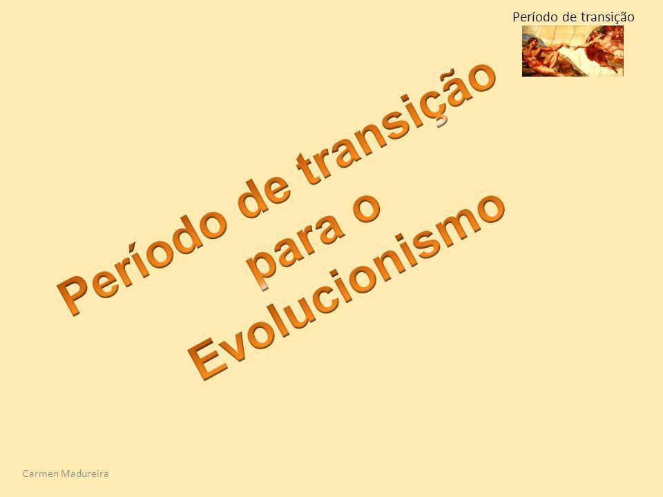 Carmen Madureira Período de transição