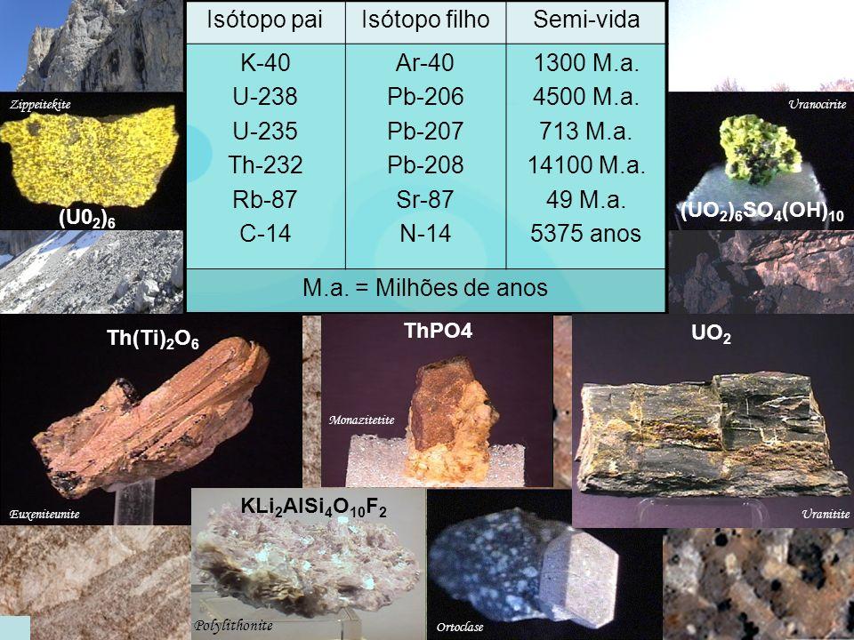 Dados : …A amostra analisada evidencia 25% do isótopo N-14. Espectrofotómetro de massa C-14 N-14 5375 10600 16000 anos 22000 O esqueleto tem 10600 ano