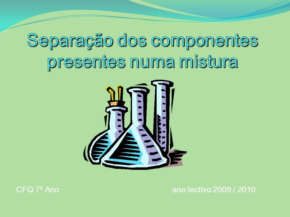 CFQ 7º Ano ano lectivo 2009 / 2010