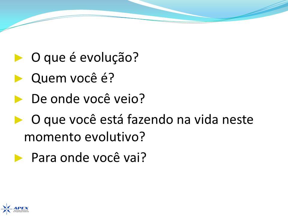 O que é evolução? Quem você é? De onde você veio? O que você está fazendo na vida neste momento evolutivo? Para onde você vai?