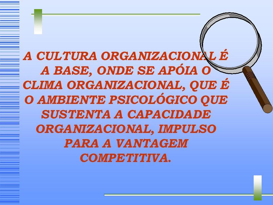 CAPACITAÇÃO EMPRESARIAL ESTRATÉGICA - Customização, Marketing, Diferenciação, Pós- venda, etc... FINANCEIRA - Redução de custos, Preços competitivos,