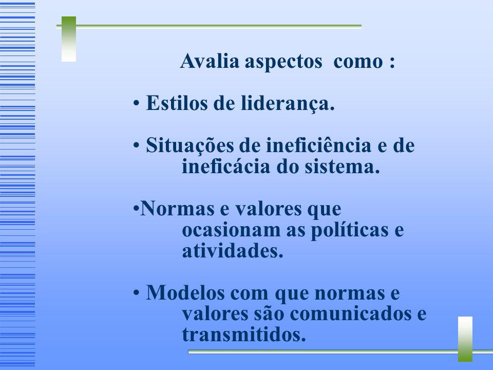 Avalia aspectos como : Estilos de liderança.Situações de ineficiência e de ineficácia do sistema.
