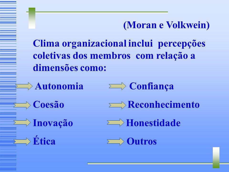 (Moran e Volkwein) Clima organizacional inclui percepções coletivas dos membros com relação a dimensões como: Autonomia Confiança Coesão Reconhecimento Inovação Honestidade Ética Outros