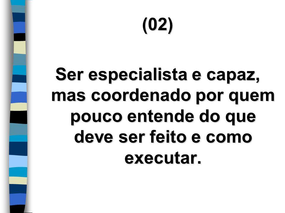 (02) Ser especialista e capaz, mas coordenado por quem pouco entende do que deve ser feito e como executar.