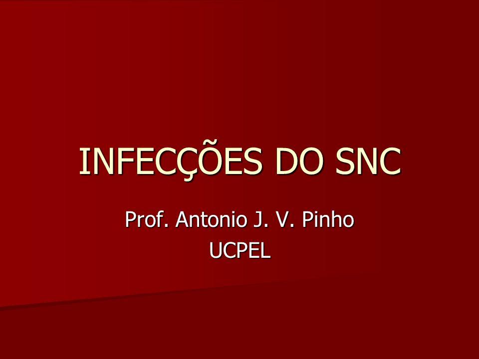INFECÇÕES DO SNC Prof. Antonio J. V. Pinho UCPEL