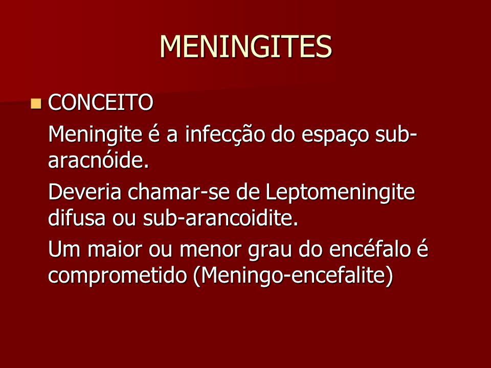 MENINGITES CONCEITO CONCEITO Meningite é a infecção do espaço sub- aracnóide. Deveria chamar-se de Leptomeningite difusa ou sub-arancoidite. Um maior