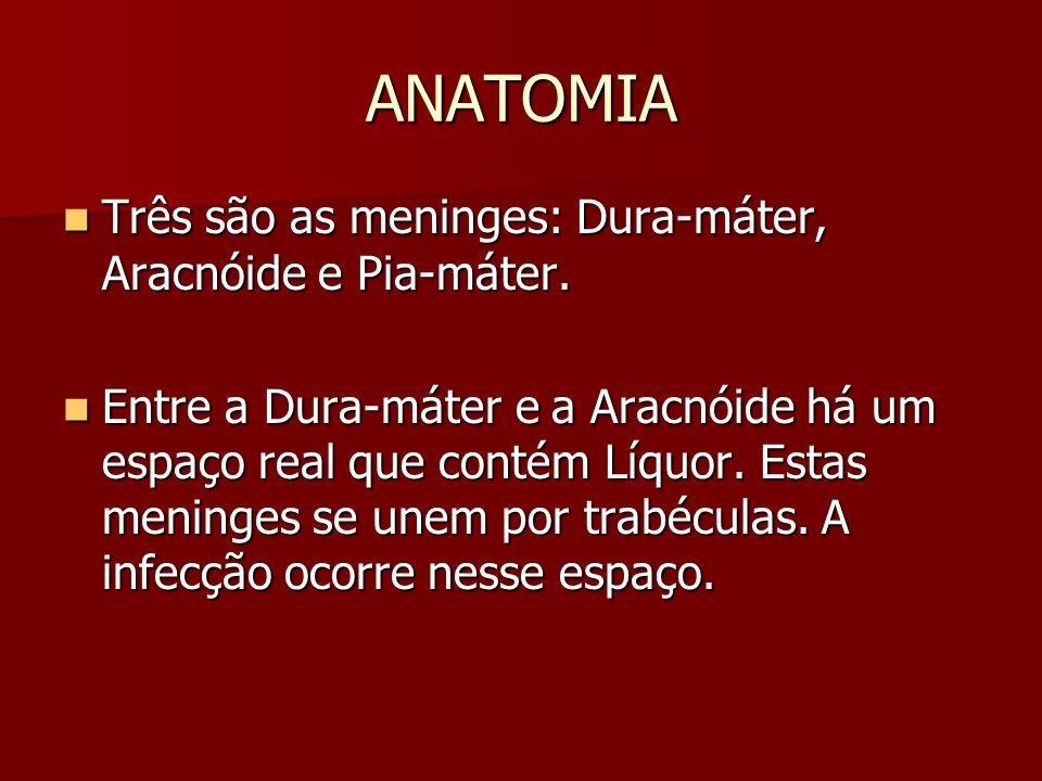 ANATOMIA Três são as meninges: Dura-máter, Aracnóide e Pia-máter. Três são as meninges: Dura-máter, Aracnóide e Pia-máter. Entre a Dura-máter e a Arac