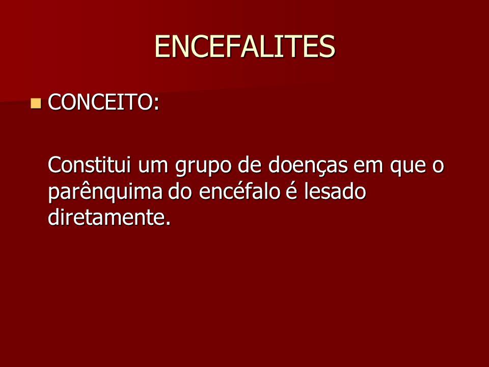 ENCEFALITES CONCEITO: CONCEITO: Constitui um grupo de doenças em que o parênquima do encéfalo é lesado diretamente.