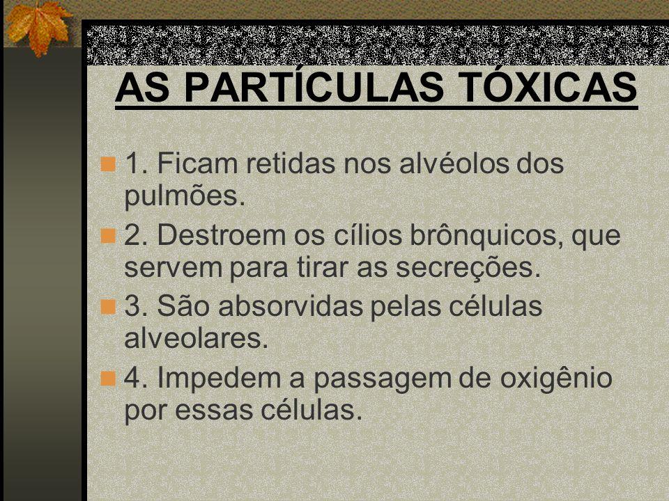 AS PARTÍCULAS TÓXICAS 5.Causam cicatrizações nas paredes alveolares.