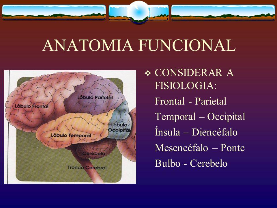 ANATOMIA FUNCIONAL CONSIDERAR A FISIOLOGIA: Frontal - Parietal Temporal – Occipital Ínsula – Diencéfalo Mesencéfalo – Ponte Bulbo - Cerebelo