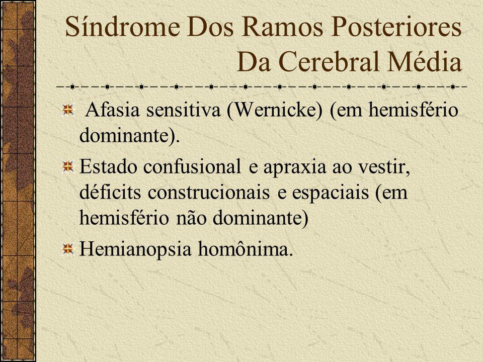 Síndrome Dos Ramos Anteriores Da Cerebral Média Hemiplegia desproporcionada com predomínio no membro superior, contra- lateral. Hemianestesia de forma