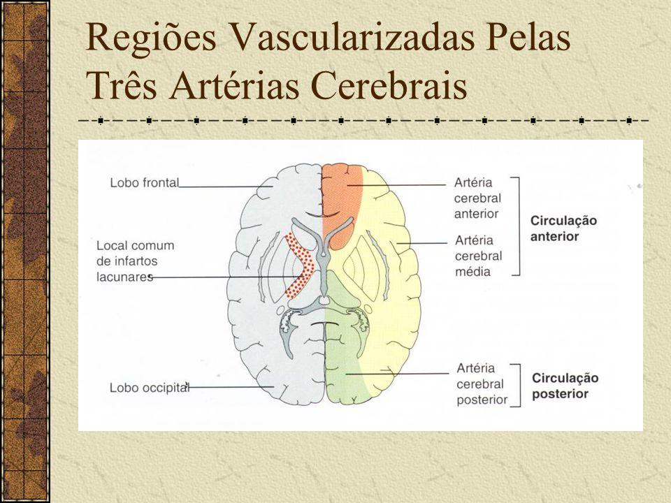 Hemorragia Sub Ou Epidural Súbita dor nas costas. Sinais de compressão medular (tetraplegia ou paraplegia) Visto na mielografia. Tratamento cirúrgico.
