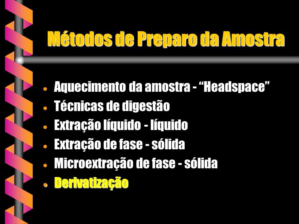 Métodos de Preparo da Amostra Aquecimento da amostra - Headspace Aquecimento da amostra - Headspace Técnicas de digestão Técnicas de digestão Extração