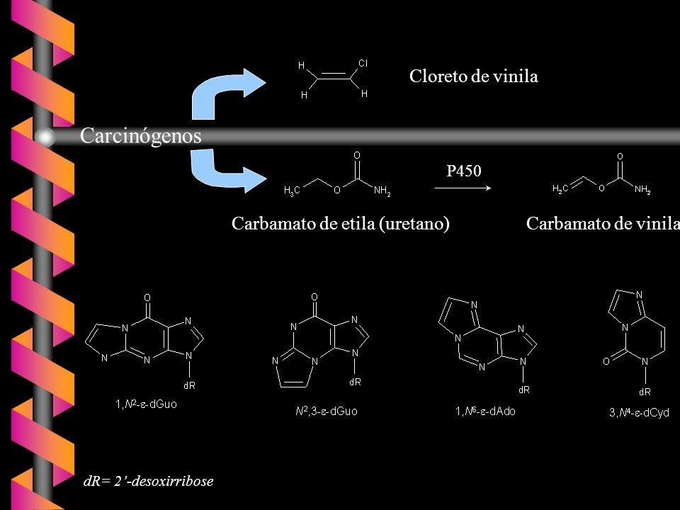 Pandya, G.A.e Moriya, M (1996) Biochemistry, 35, 11487 - 11492; Moriya, M.
