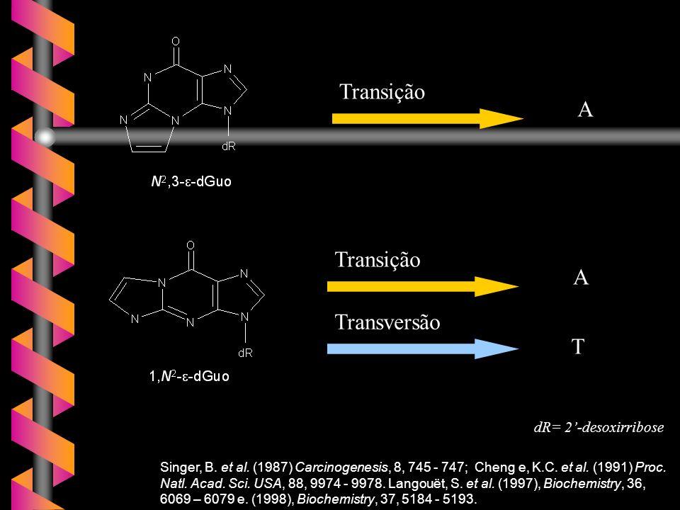 Singer, B. et al. (1987) Carcinogenesis, 8, 745 - 747; Cheng e, K.C. et al. (1991) Proc. Natl. Acad. Sci. USA, 88, 9974 - 9978. Langouët, S. et al. (1