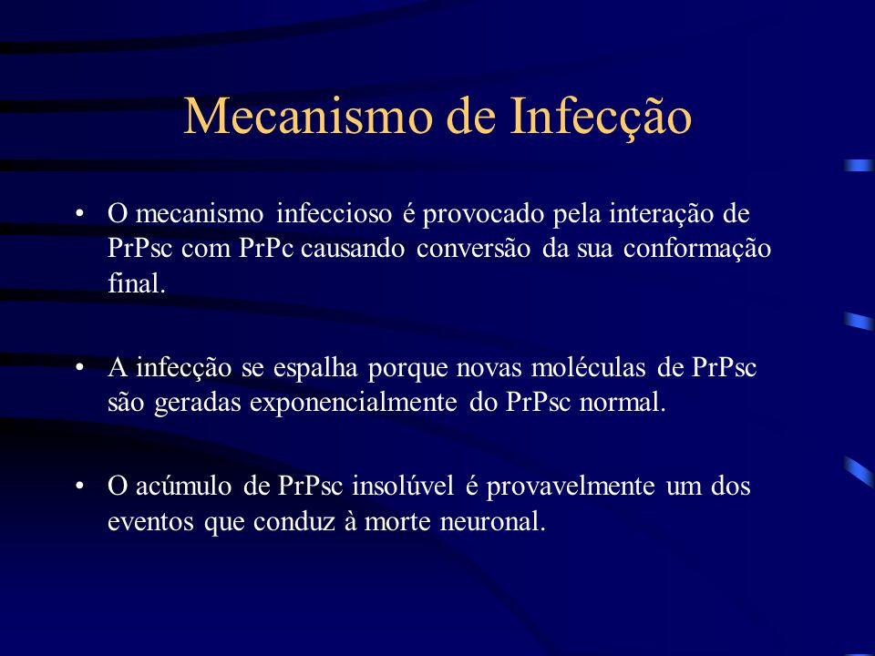 Príons São formas não convencionais de agentes infecciosos compostos somente por proteínas. A partícula infecciosa é composta de duas proteínas que po