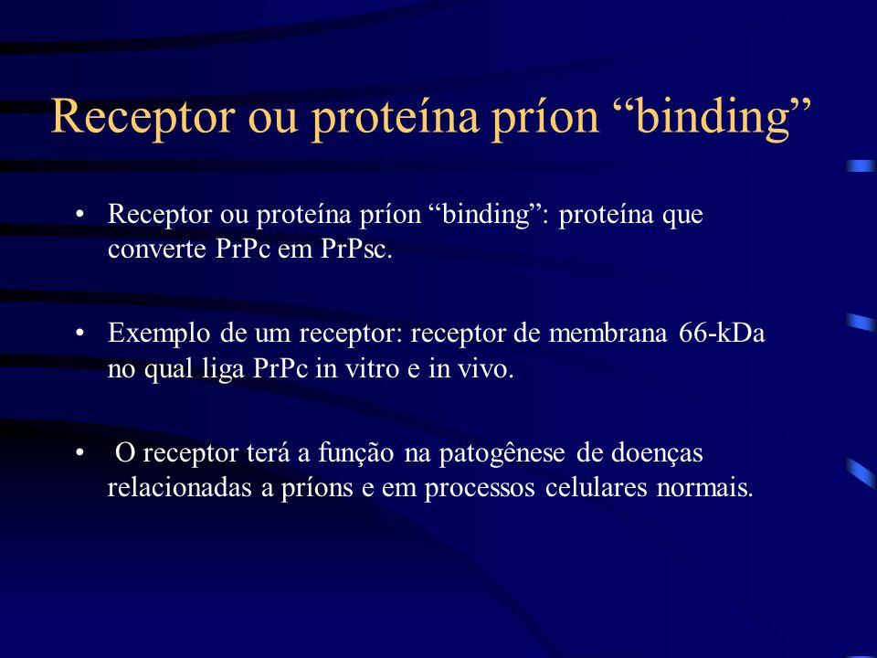 Receptor ou proteína príon binding Receptor ou proteína príon binding: proteína que converte PrPc em PrPsc.