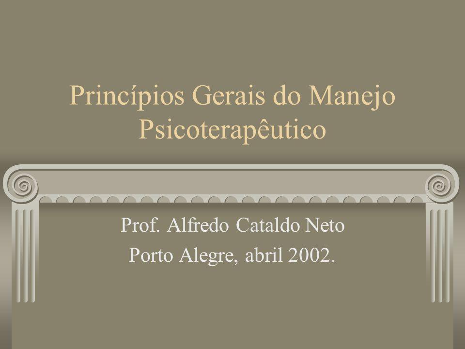 Princípios Gerais do Manejo Psicoterapêutico Prof. Alfredo Cataldo Neto Porto Alegre, abril 2002.