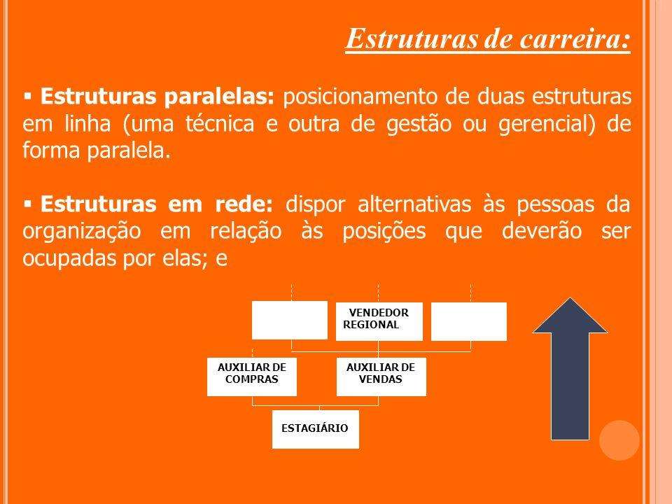Estruturas de carreira: Estruturas paralelas: posicionamento de duas estruturas em linha (uma técnica e outra de gestão ou gerencial) de forma paralel