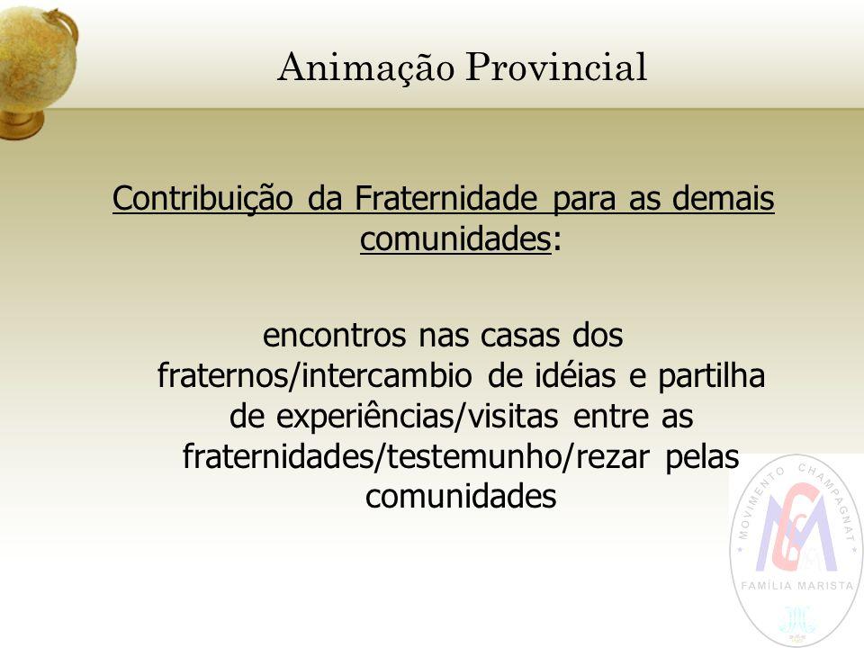 Animação Provincial Contribuição da Fraternidade para as demais comunidades: encontros nas casas dos fraternos/intercambio de idéias e partilha de exp