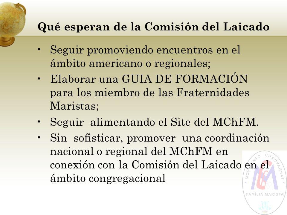Qué esperan de la Comisión del Laicado Seguir promoviendo encuentros en el ámbito americano o regionales; Elaborar una GUIA DE FORMACIÓN para los miem