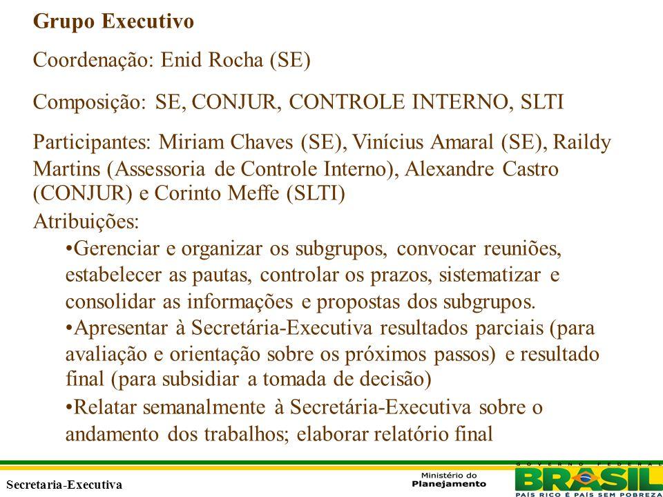 Secretaria Executiva Secretaria-Executiva Grupo Executivo Coordenação: Enid Rocha (SE) Composição: SE, CONJUR, CONTROLE INTERNO, SLTI Participantes: Miriam Chaves (SE), Vinícius Amaral (SE), Raildy Martins (Assessoria de Controle Interno), Alexandre Castro (CONJUR) e Corinto Meffe (SLTI) Atribuições: Gerenciar e organizar os subgrupos, convocar reuniões, estabelecer as pautas, controlar os prazos, sistematizar e consolidar as informações e propostas dos subgrupos.