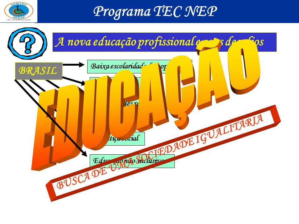 A nova educação profissional e seus desafios BRASIL Baixa escolaridade da população Desemprego Disparidades regionais Miséria Injustiça social Educaçã