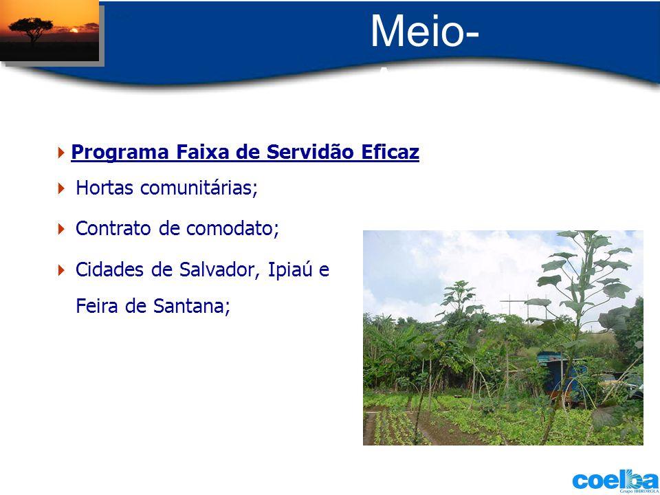 Hortas comunitárias; Contrato de comodato; Cidades de Salvador, Ipiaú e Feira de Santana; Programa Faixa de Servidão Eficaz
