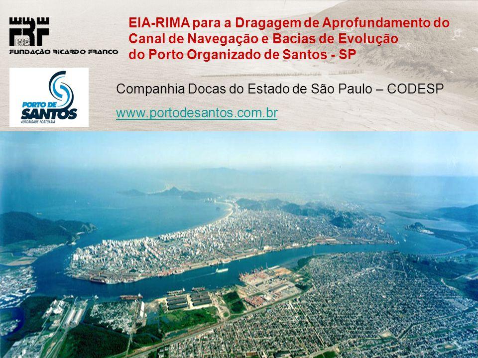 FRF-IME / CPEA / FEEMA 40 Companhia Docas do Estado de São Paulo – CODESP www.portodesantos.com.br EIA-RIMA para a Dragagem de Aprofundamento do Canal