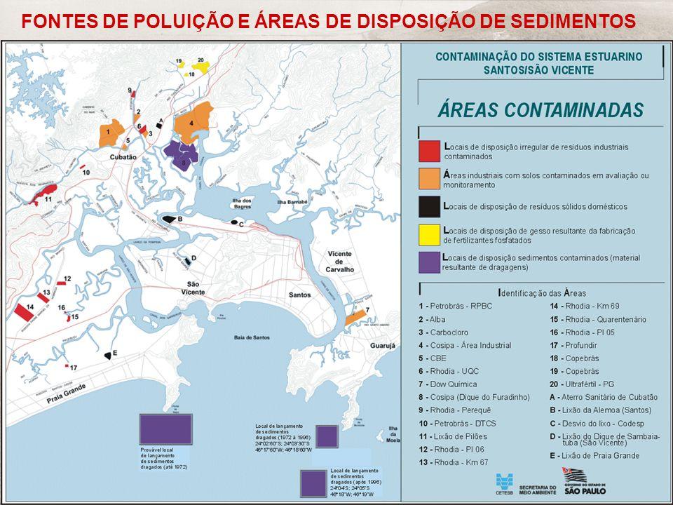 FRF-IME / CPEA / FEEMA 42 FONTES DE POLUIÇÃO E ÁREAS DE DISPOSIÇÃO DE SEDIMENTOS