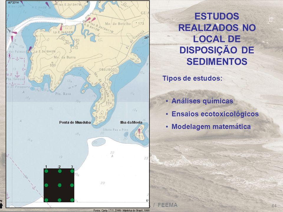 FRF-IME / CPEA / FEEMA 44 ESTUDOS REALIZADOS NO LOCAL DE DISPOSIÇÃO DE SEDIMENTOS Análises químicas Ensaios ecotoxicológicos Modelagem matemática Tipo