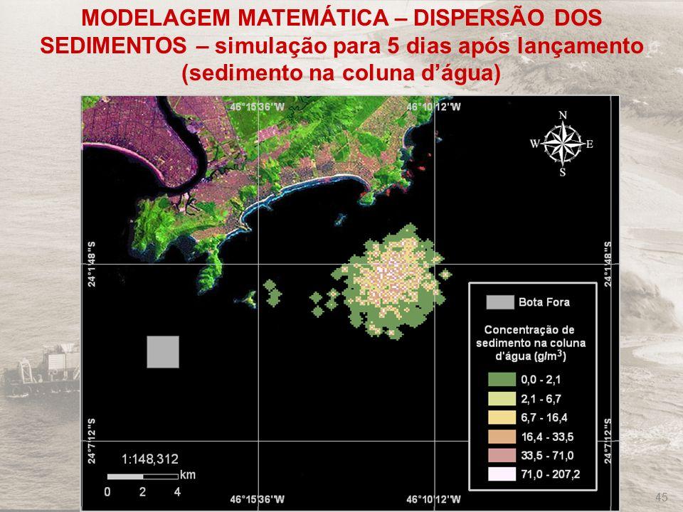 FRF-IME / CPEA / FEEMA 45 MODELAGEM MATEMÁTICA – DISPERSÃO DOS SEDIMENTOS – simulação para 5 dias após lançamento (sedimento na coluna dágua)