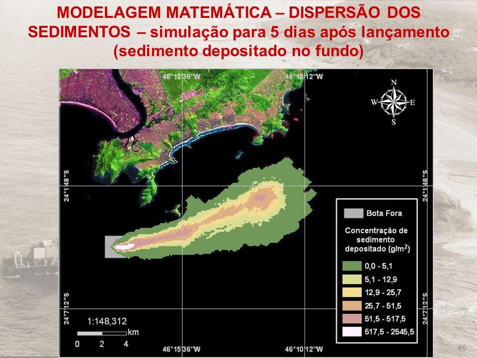 FRF-IME / CPEA / FEEMA 46 MODELAGEM MATEMÁTICA – DISPERSÃO DOS SEDIMENTOS – simulação para 5 dias após lançamento (sedimento depositado no fundo)