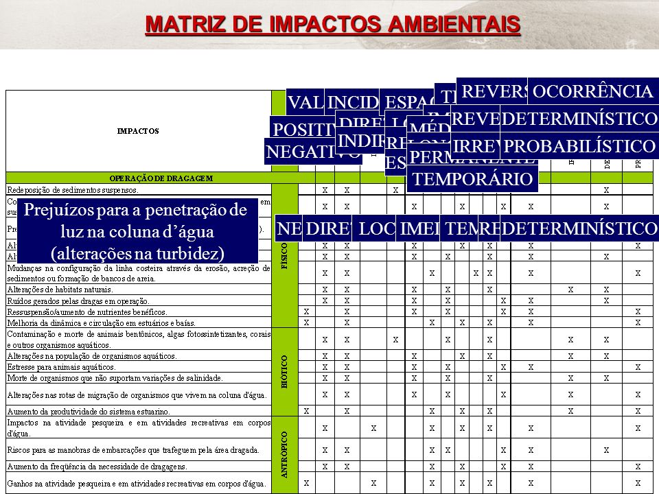 FRF-IME / CPEA / FEEMA47 MATRIZ DE IMPACTOS AMBIENTAIS VALOR POSITIVO NEGATIVO INCIDÊNCIA DIRETO INDIRETO ESPAÇO LOCAL REGIONAL ESTRATÉGICO TEMPO IMED