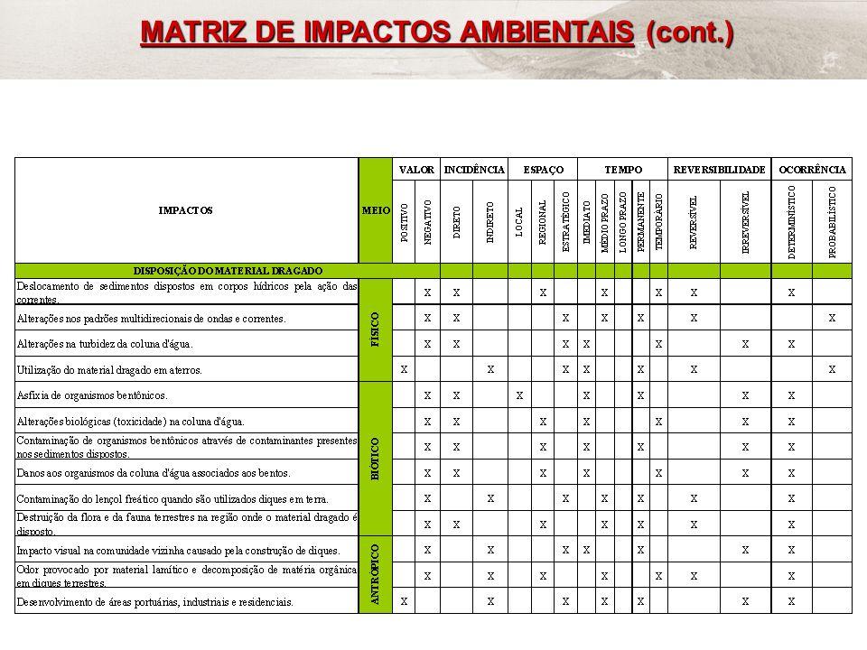 FRF-IME / CPEA / FEEMA48 MATRIZ DE IMPACTOS AMBIENTAIS (cont.)