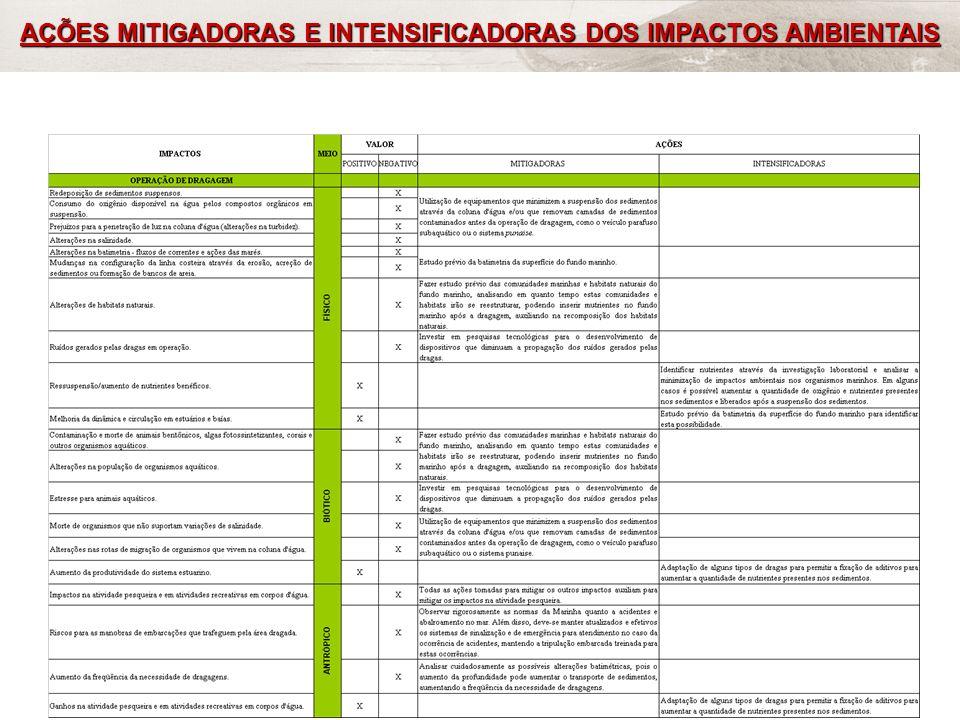 FRF-IME / CPEA / FEEMA49 AÇÕES MITIGADORAS E INTENSIFICADORAS DOS IMPACTOS AMBIENTAIS