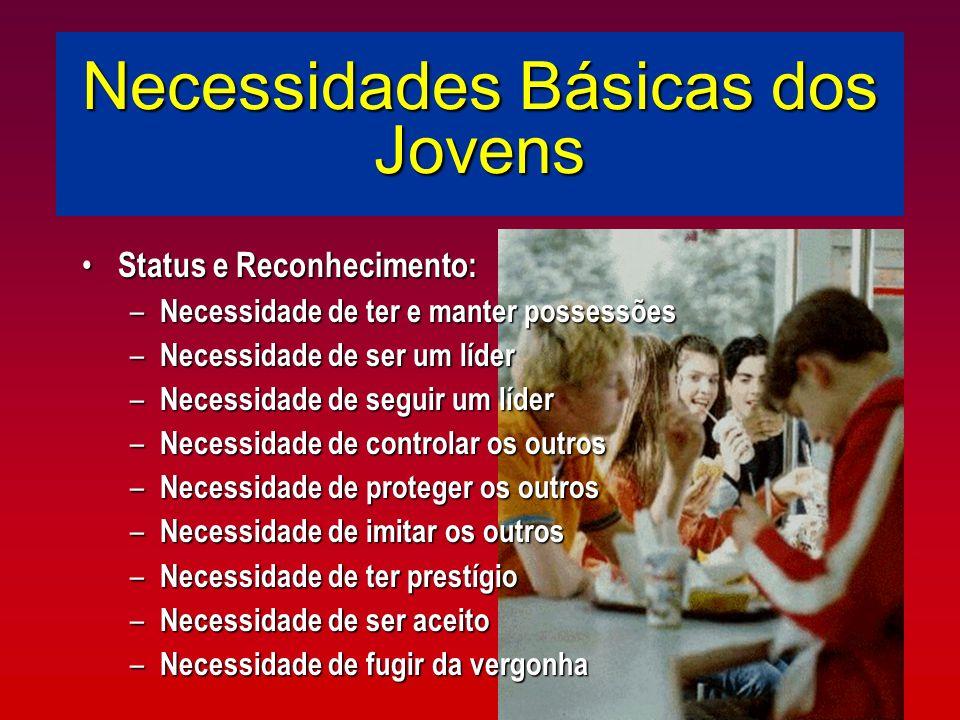Necessidades Básicas dos Jovens Status e Reconhecimento: Status e Reconhecimento: – Necessidade de ter e manter possessões – Necessidade de ser um líd