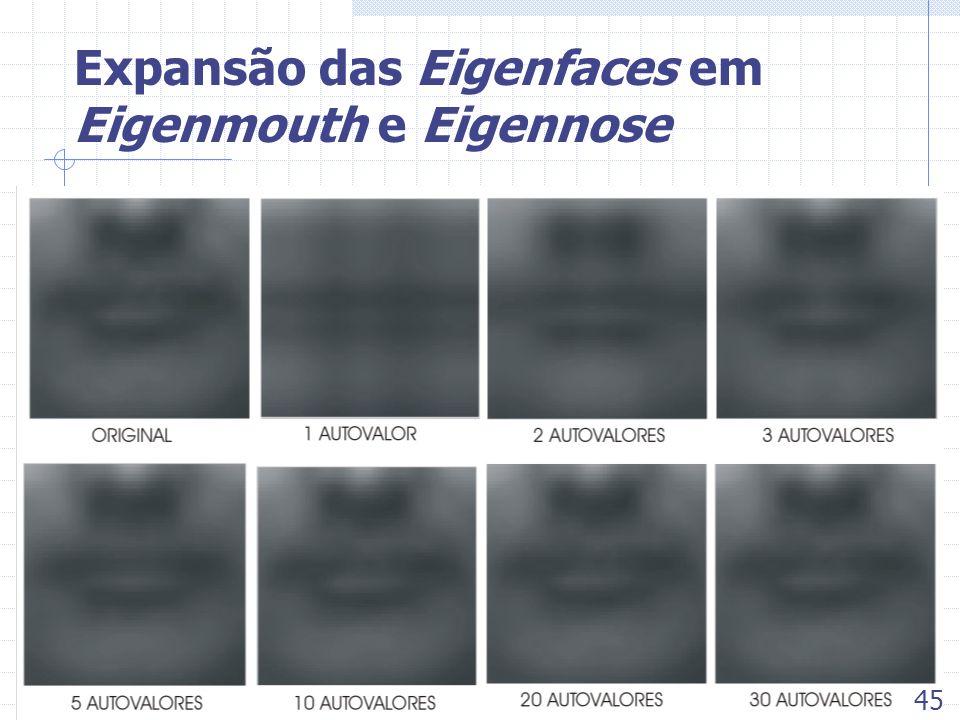 Expansão das Eigenfaces em Eigenmouth e Eigennose 45