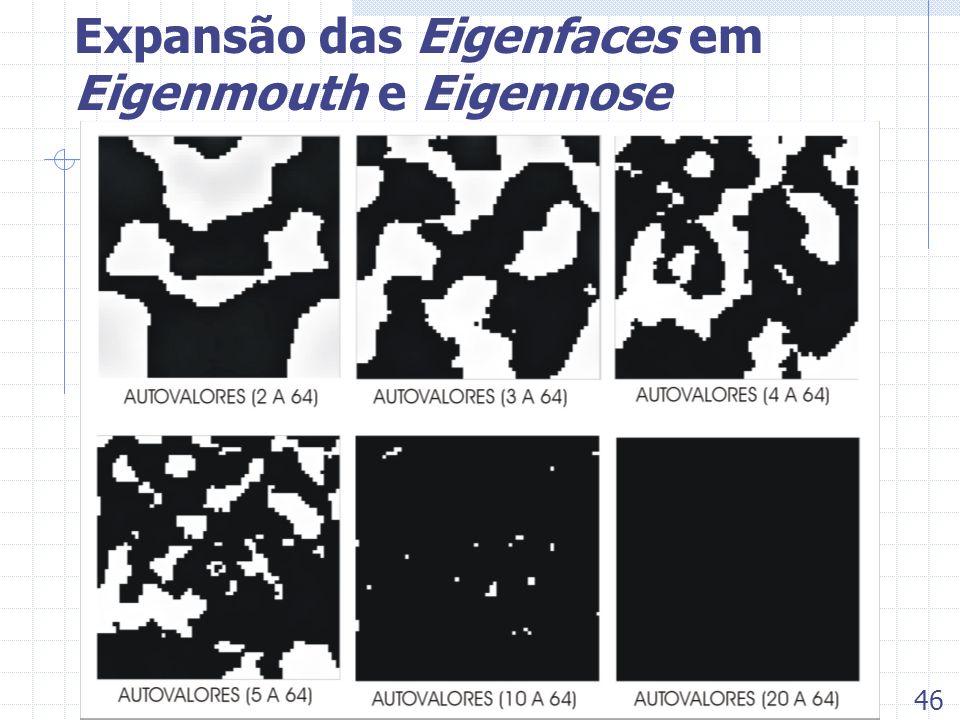 Expansão das Eigenfaces em Eigenmouth e Eigennose 46