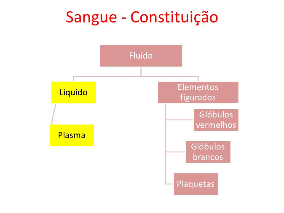 Sangue - Constituição Fluído Líquido Plasma Elementos figurados Glóbulos vermelhos Glóbulos brancos Plaquetas