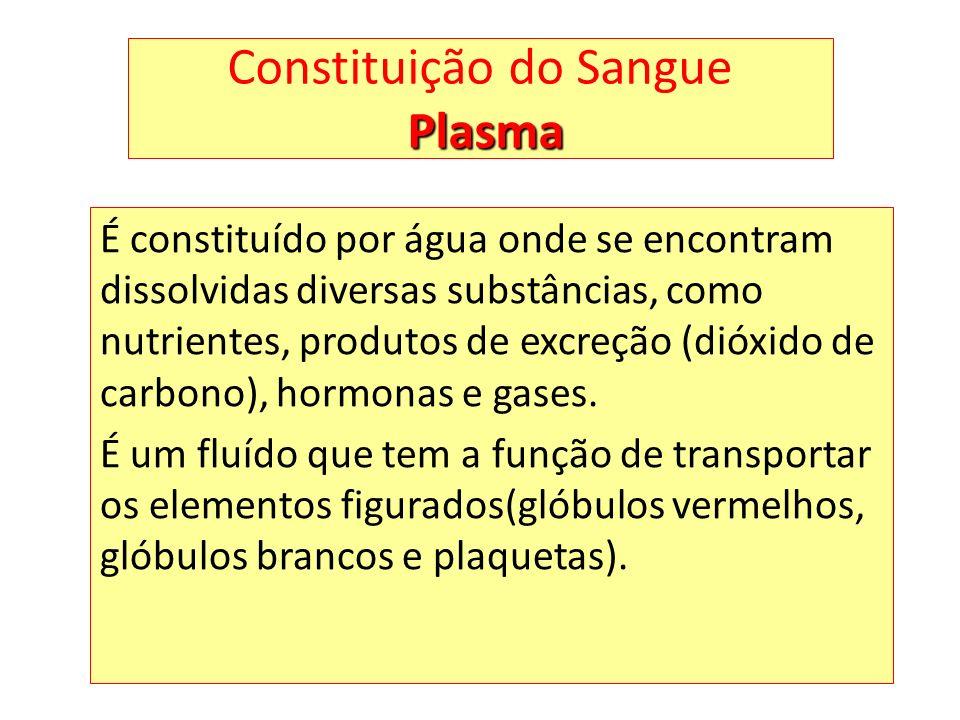 Plasma Constituição do Sangue Plasma É constituído por água onde se encontram dissolvidas diversas substâncias, como nutrientes, produtos de excreção (dióxido de carbono), hormonas e gases.