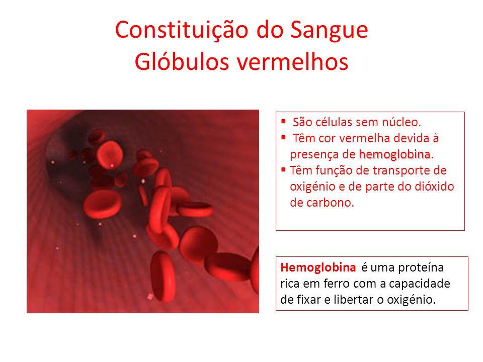 Ciclo Cardíaco Fases Situação do miocárdio Válvulas aurículo- ventricular es Válvulas arteriais Sentido do movimento do sangue Duração em segundos Diástole geral Completamen te relaxado AbertasFechadas Das veias para as aurículas e destas para os ventrículos de forma passiva 0,4 Sístole auricular Contraído ao nível das aurículas AbertasFechadas Das aurículas para os ventrículos, sob pressão 0,1 Sístole ventricular Contraído ao nível dos ventrículos FechadasAbertasDos ventrículos para as artérias, sob pressão 0,3