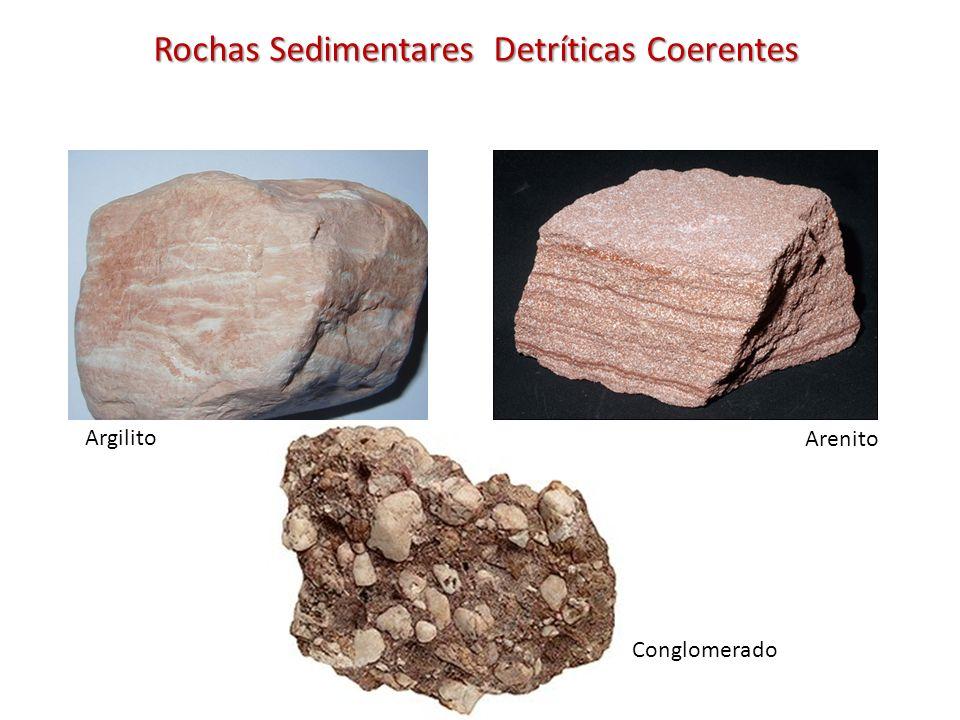 Rochas Sedimentares Detríticas Coerentes Argilito Arenito Conglomerado