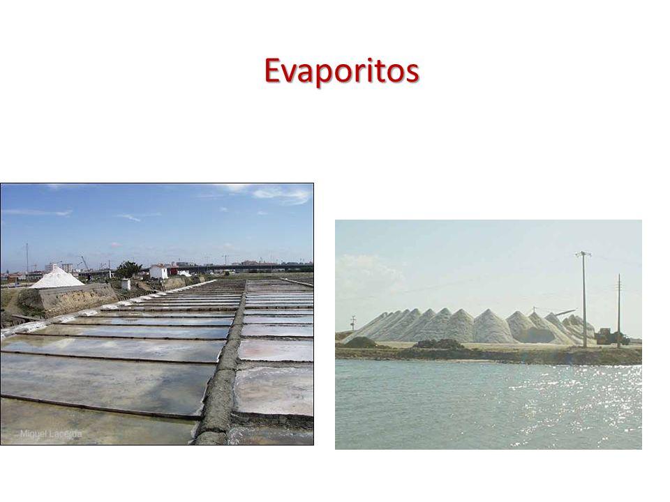 Evaporitos
