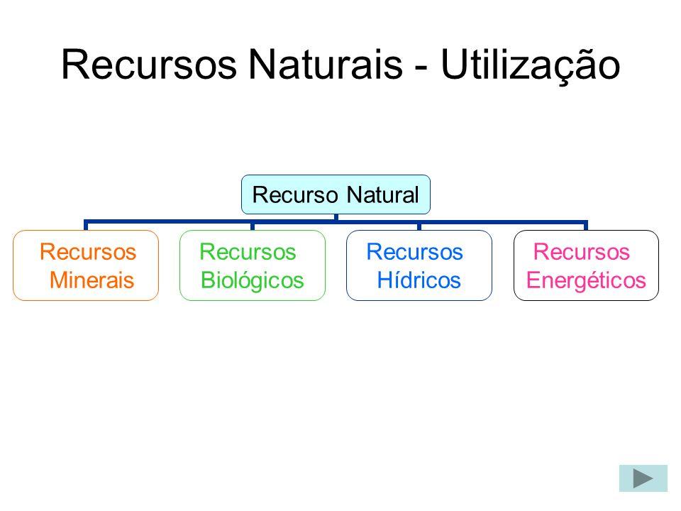 Recursos Minerais recursos minerais Os recursos minerais são os minerais que constituem a crusta terrestre.