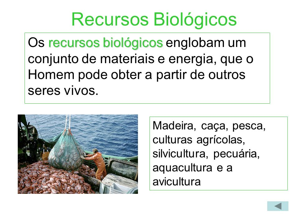 Recursos Biológicos recursos biológicos Os recursos biológicos englobam um conjunto de materiais e energia, que o Homem pode obter a partir de outros