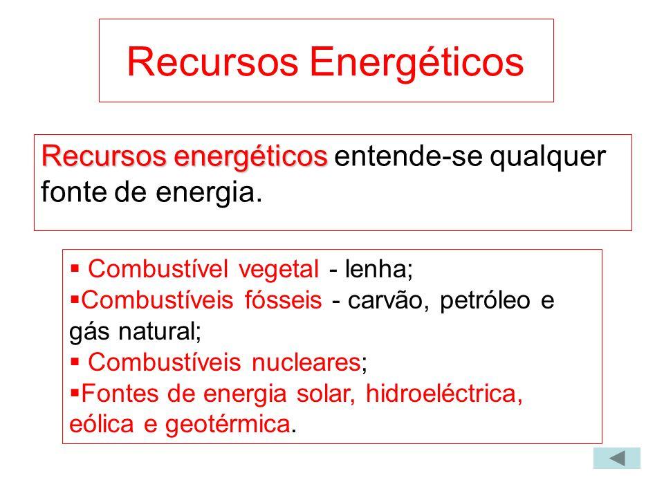 Recursos Energéticos Recursos energéticos Recursos energéticos entende-se qualquer fonte de energia. Combustível vegetal - lenha; Combustíveis fósseis